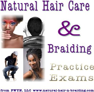 Natural Hair Care and Braiding Practice Exams  by  Renee Miner