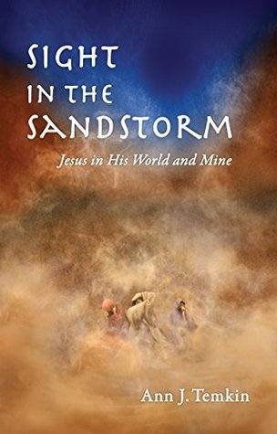 Sight In The Sandstorm: Jesus In His World And Mine  by  Ann J. Temkin