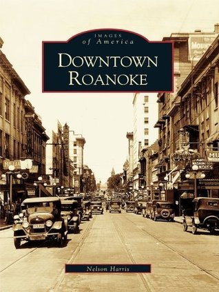 Downtown Roanoke  by  Nelson Harris