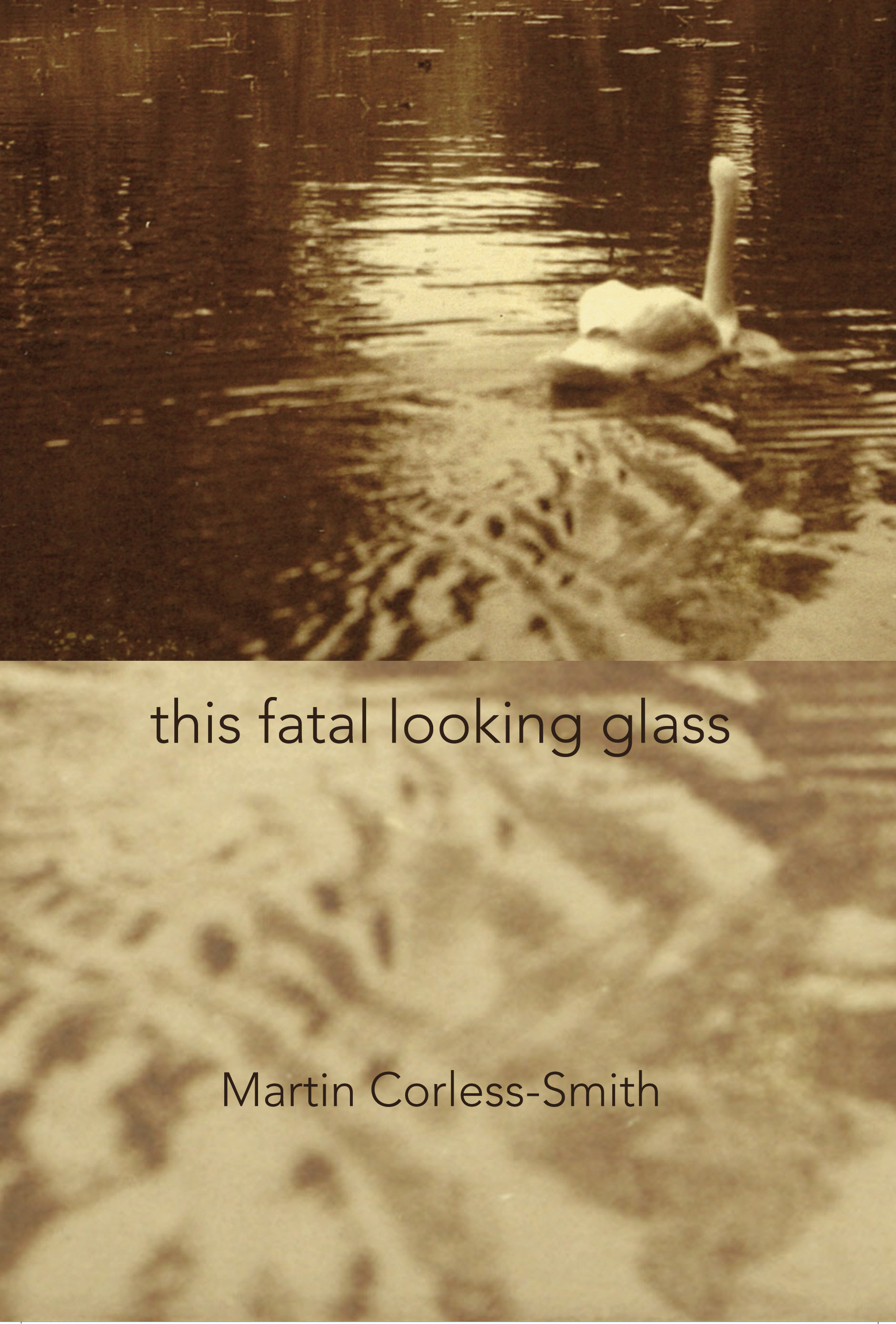 This Fatal Looking Glass Martin Corless-Smith