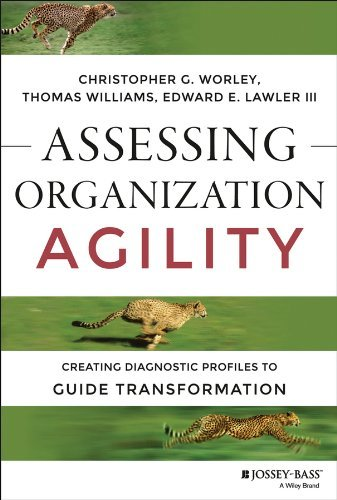 Assessing Organization Agility: Creating Diagnostic Profiles to Guide Transformation (J-B Short Format Series)  by  Christopher G. Worley