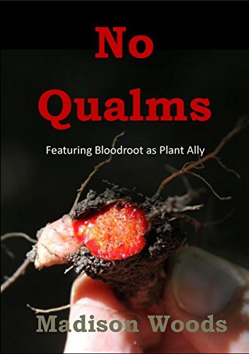 No Qualms: Featuring Bloodroot as Plant Ally  by  Madison Woods