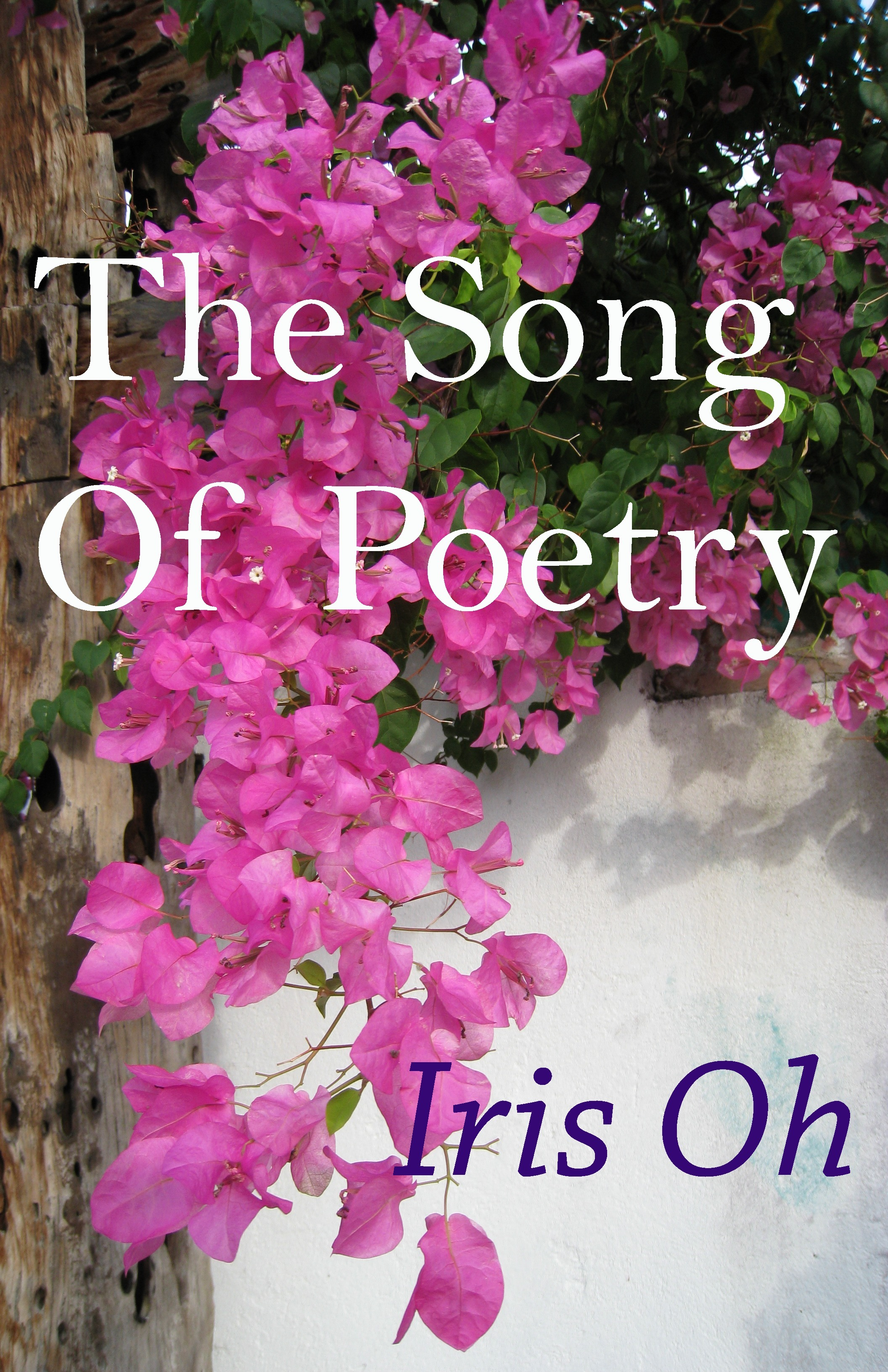 The Song Of Poetry  by  Iris Oh
