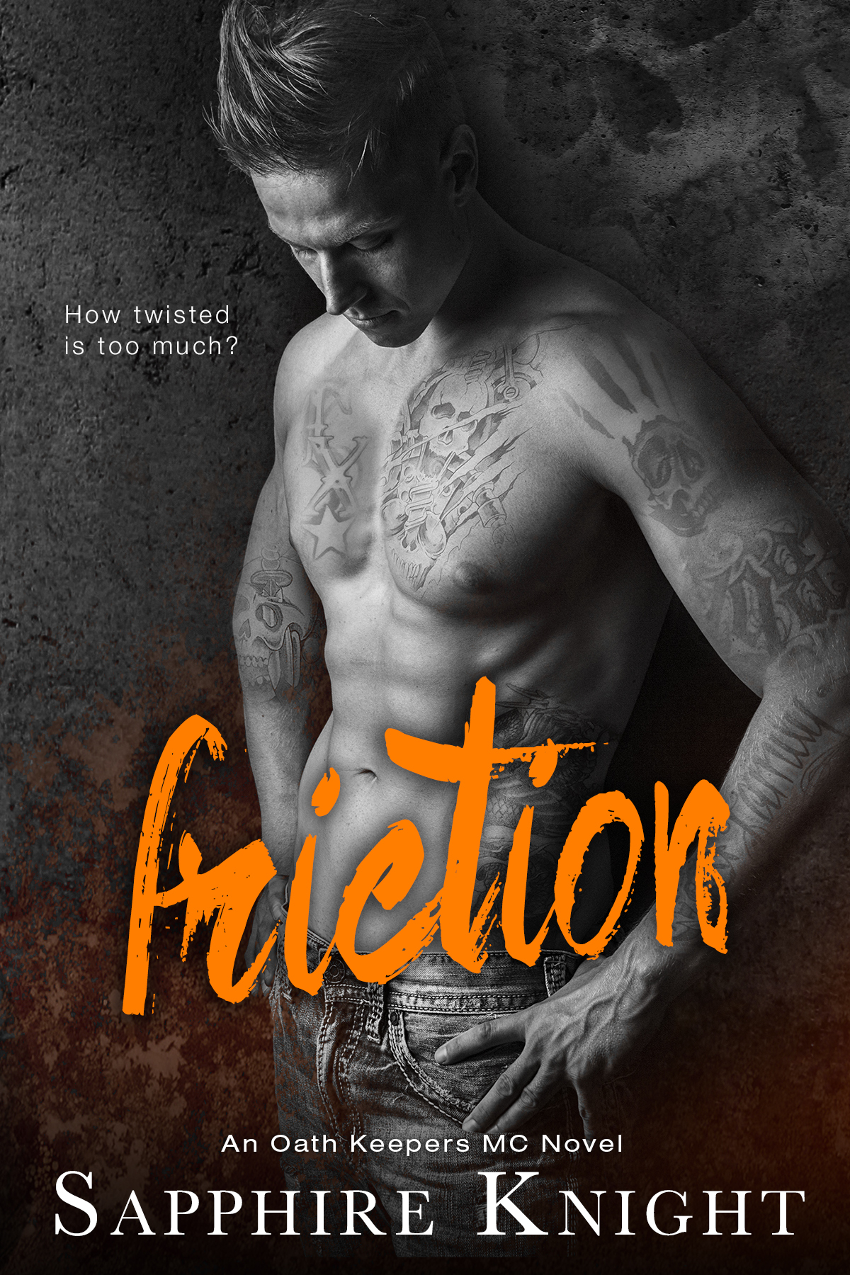 Friction (An Oath Keepers Novel)  by  Sapphire Knight