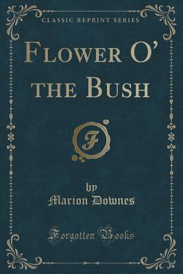 Flower O the Bush Marion Downes