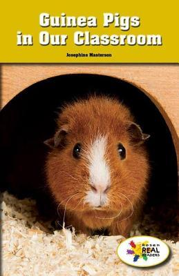 Guinea Pigs in Our Classroom  by  Josephine Masterson