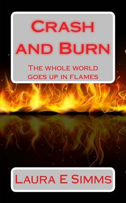 Crash and Burn  by  Laura E Simms