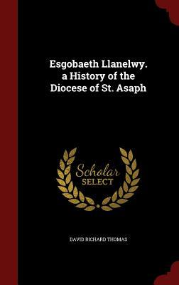 Esgobaeth Llanelwy. a History of the Diocese of St. Asaph David Richard Thomas