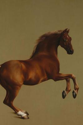Whistlejacket Horse Portrait (George Stubbs): Blank 200 Page Lined Journal for Your Thoughts, Ideas, and Inspiration  by  Jmm Shepperd