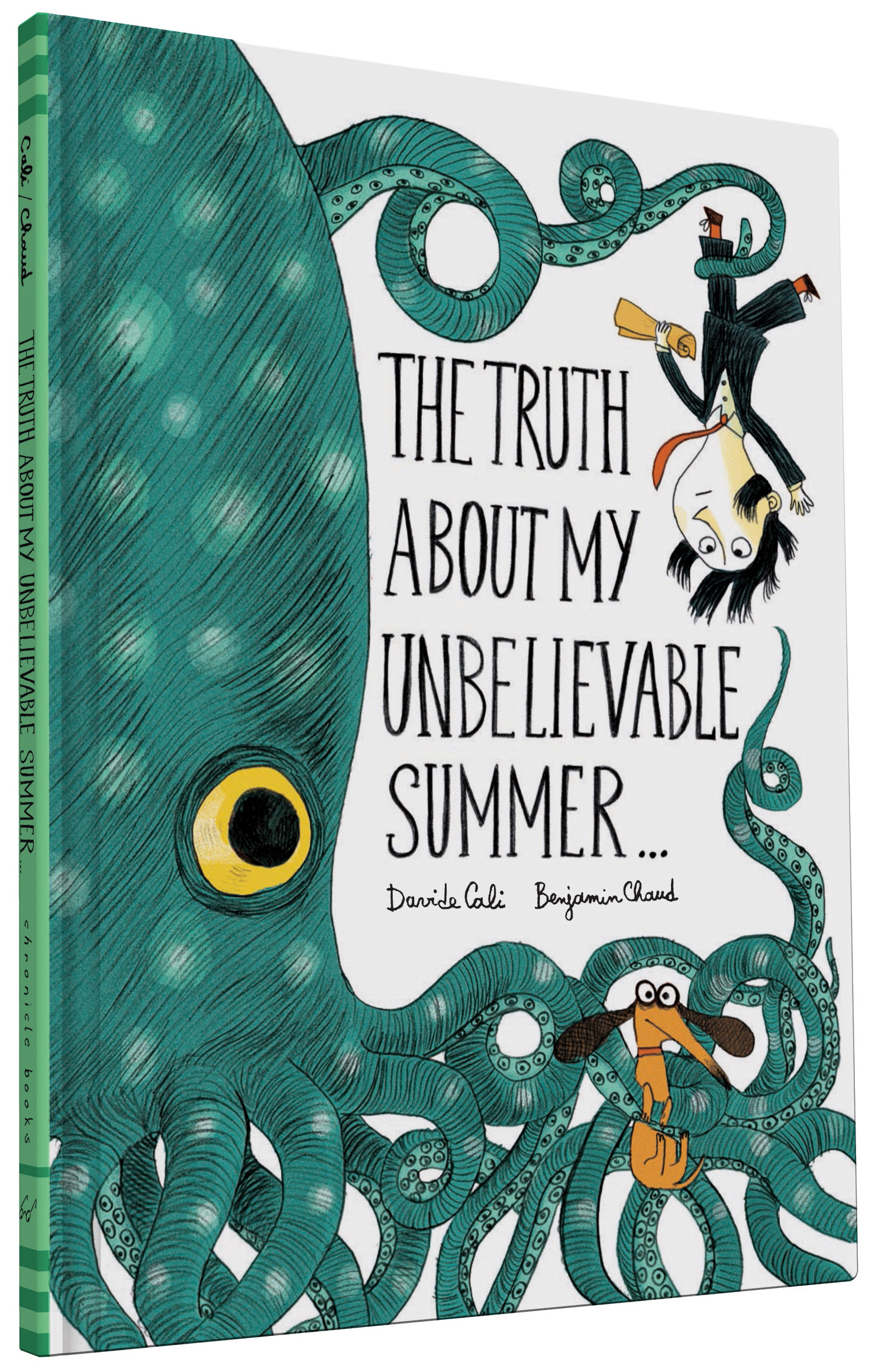 The Truth About My Unbelievable Summer . . .  by  Davide Cali