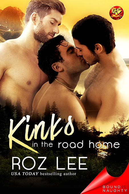 Kinks In the Road Home Roz Lee
