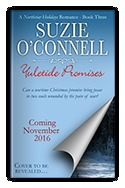Yuletide Promises (Northstar Holidays, #3) Suzie OConnell
