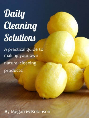 Daily Cleaning Solutions Megan Robinson