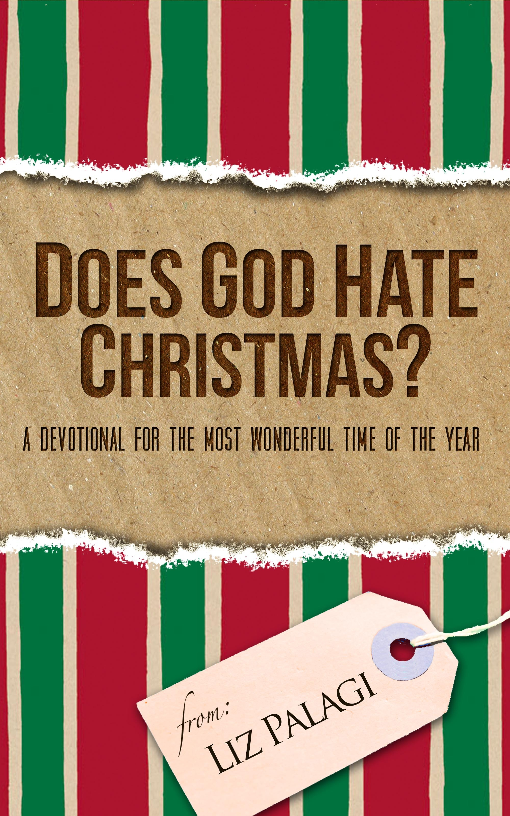Does God Hate Christmas?: A Devotional for the Most Wonderful Time of the Year  by  Liz Palagi