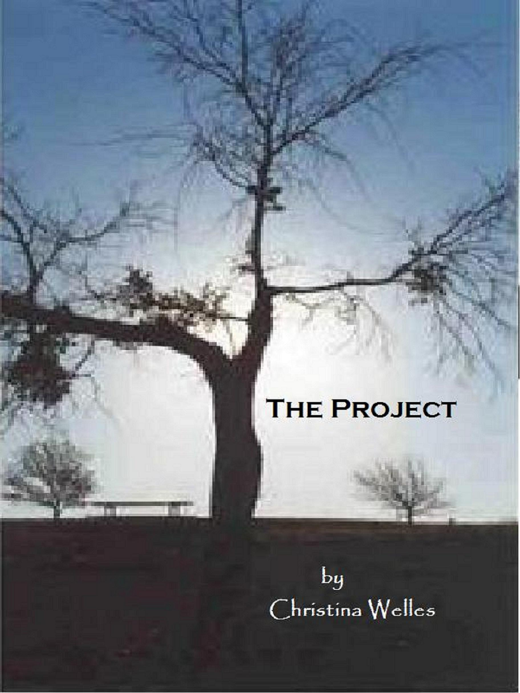 The Project  by  Christina Welles