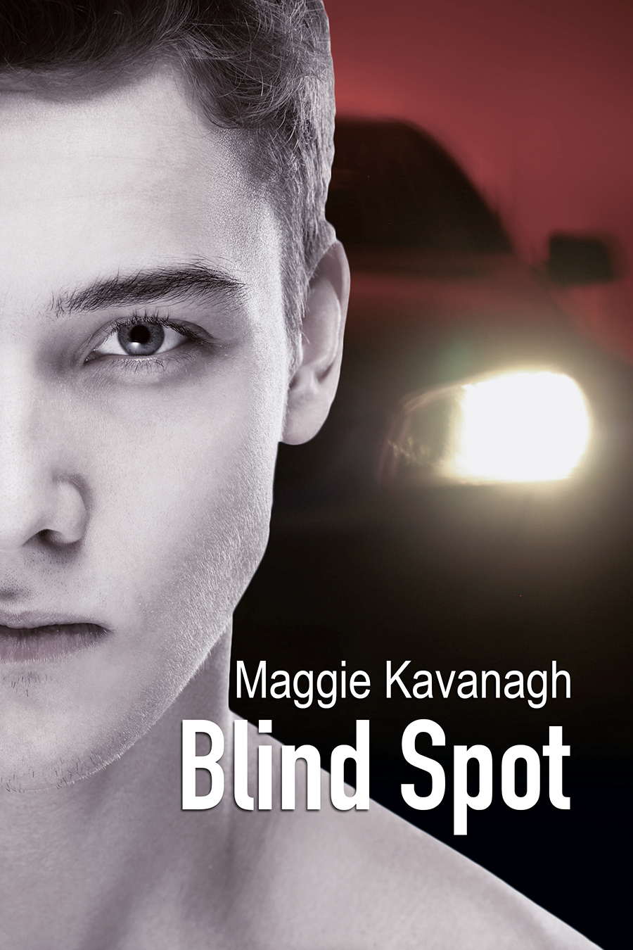 Blind Spot (The Stonebridge Mysteries #3)  by  Maggie Kavanagh