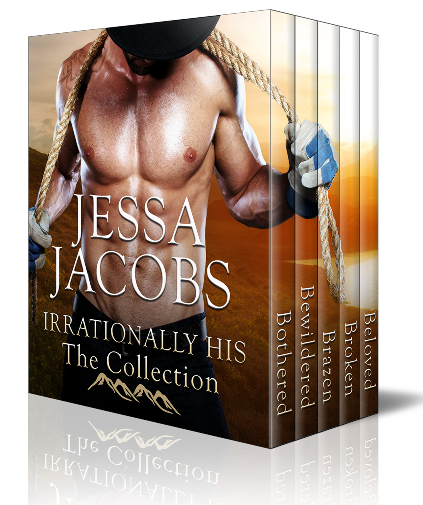 Irrationally His, The Collection  by  Jessa Jacobs