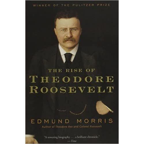 review of theodore hemmingway s the rise Read common sense media's the sun also rises review, age rating is one of nobel prize-winning author ernest hemingway's greatest literary achievements.