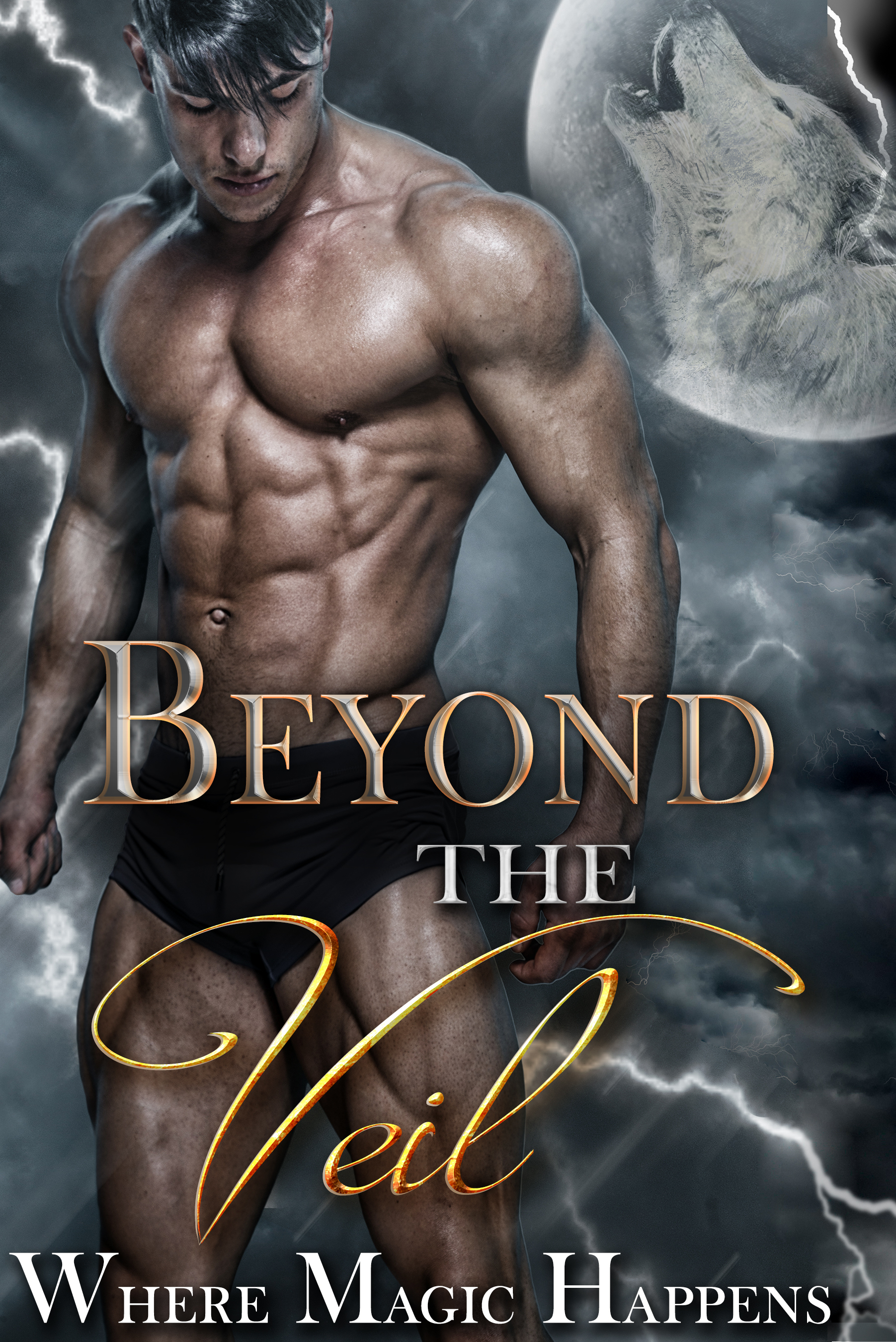 Beyond the Veil: A Boxed Set of Magical and Paranormal Romance  by  Rozlyn Sparks