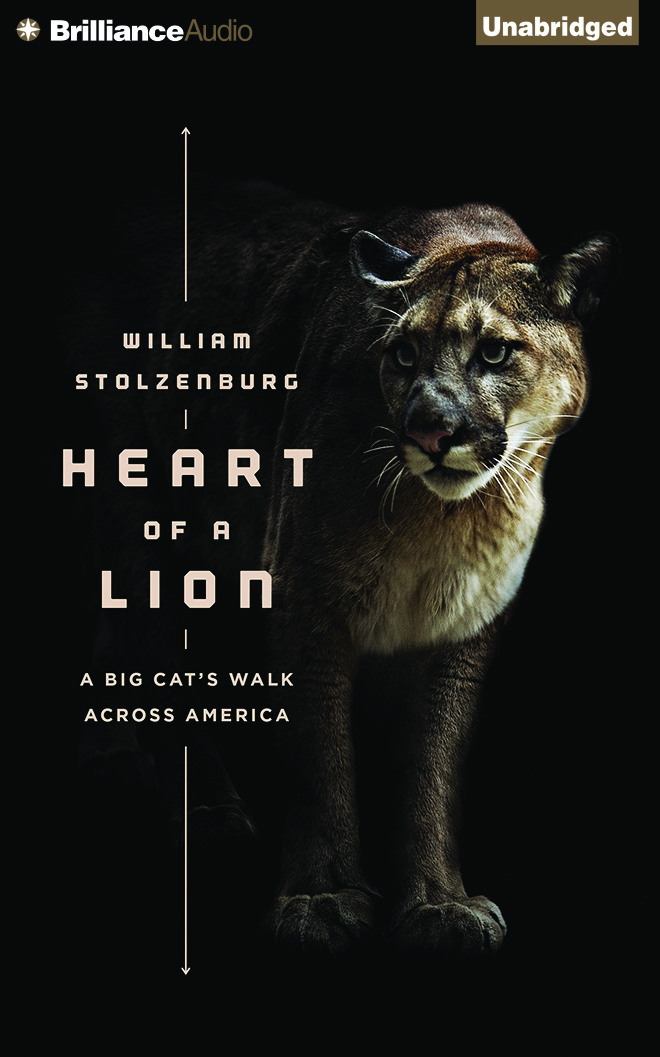 Heart of a Lion: A Lone Cats Walk Across America  by  Will Stolzenburg