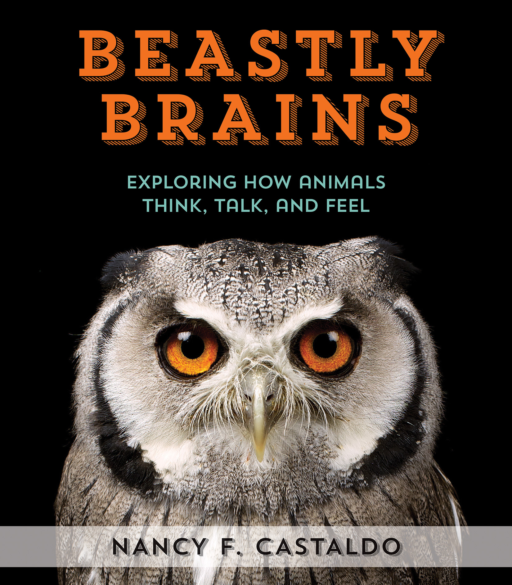 Beastly Brains: How Animals Use Their Brains to Think, Feel, Share  by  Nancy Castaldo