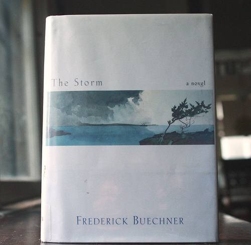 what i'm reading- the storm
