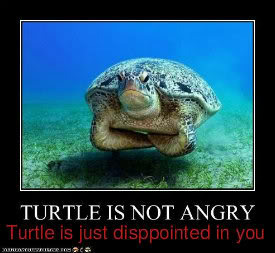 Turtlefail