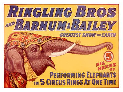 photo ringling-brothers-circus-performing-elephant_zps2687fe56.jpg