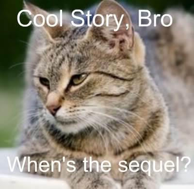 lol cat Pictures, Images and Photos