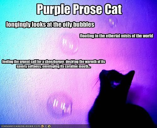 Purple Prose Cat