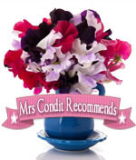Mrs Condit Recommends photo mrscrecommends2_zps98e844fe.jpg
