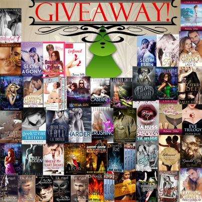 giveaway dec 2013 small