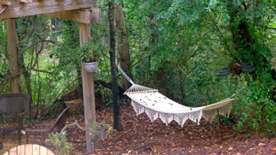 Hammock out back.