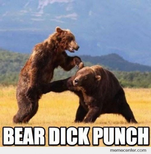 photo bear fight_zpswwzk85bl.jpg