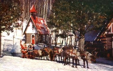 Daddy with the reindeer. The North Pole is bathed in 24 hours of daylight during the summer.