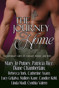 the journey home frnt cvr media file