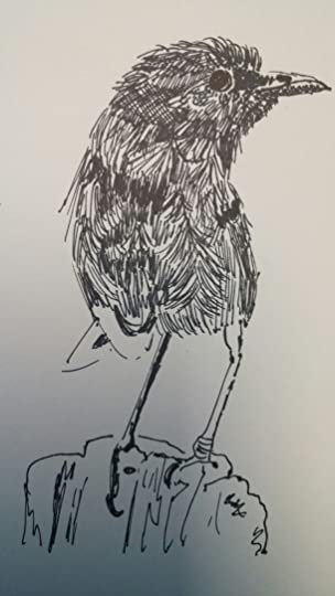 wpid 20151007 1143021 #Inktober2015 Draw a Bird Day