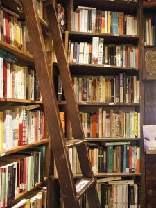 Book shelves with a ladder