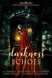 Darkness Echoes E-Book Cover small