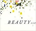 Regarding Beauty: A View of the Late Twentieth Century