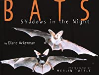 Bats: Shadows in the Night