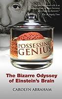 Possessing Genius