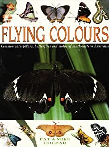 Flying Colours: Common Cate[R]Pillars, Butterflies, And Moths Of South Eastern Australia