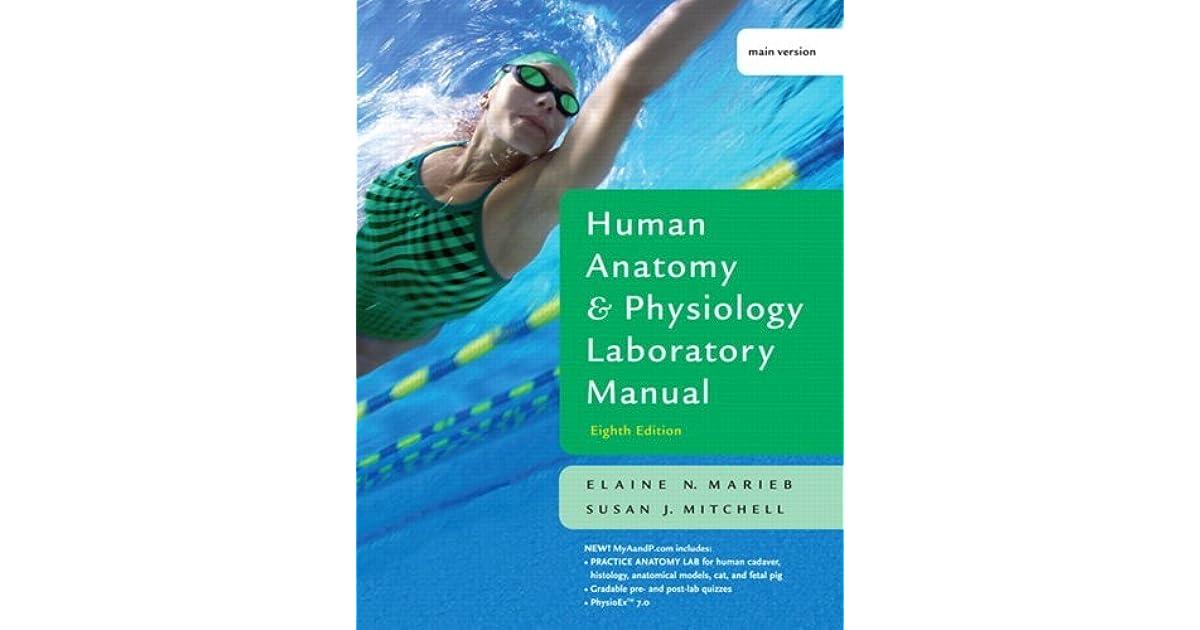 Human Anatomy And Physiology Lab Manual By Elaine N Marieb