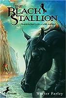 The Black Stallion (The Black Stallion, #1)