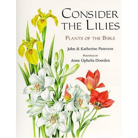 essays on consider the lilies