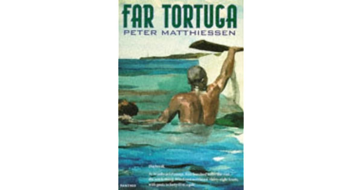 Daren Christchurch New Zealands Review Of Far Tortuga