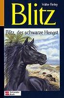 Blitz, der schwarze Hengst (Blitz, #1)