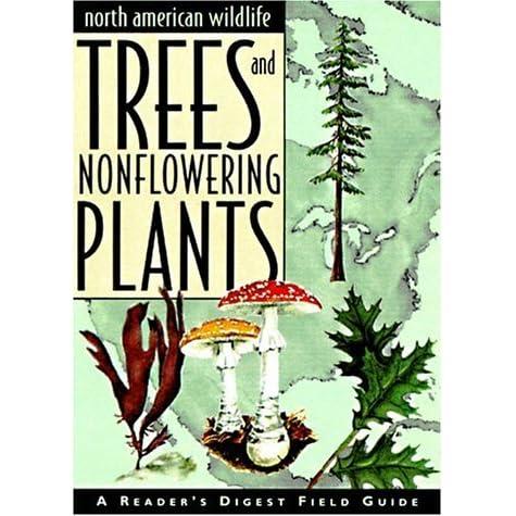 a look at north american wildlife