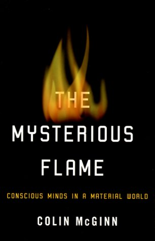 The Mysterious Flame: Conscious Minds In A Material World
